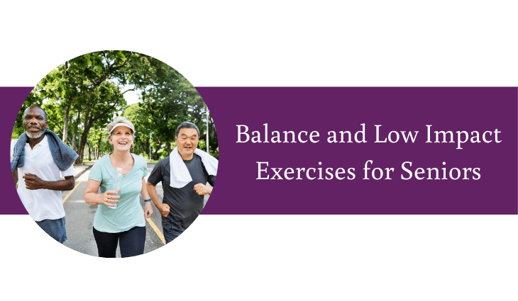 Balance and Low Impact Exercises for Seniors
